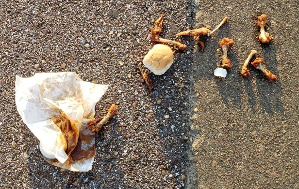Chicken wing litter